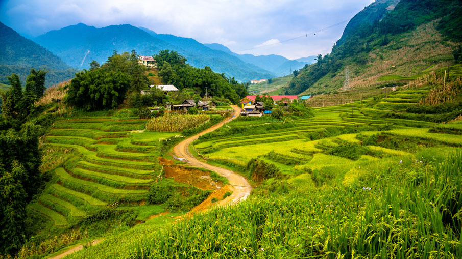 BIKING TOUR TO MUONG HOA VALLEY – BAN HO VILLAGE